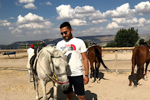 Cemal Ranch Horse Riding Center, Ortahisar, Turkey