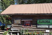 Aurora Dora, Talkeetna, United States