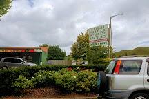 Tirau Shell & Jade Factory, Tirau, New Zealand