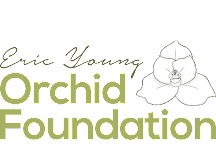 Eric Young Orchid Foundation, Trinity, United Kingdom