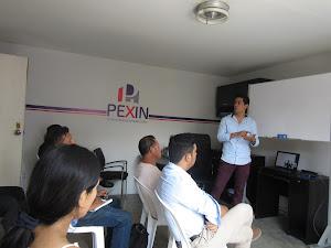 Perú Express Inmobiliaria (PEXIN) 5