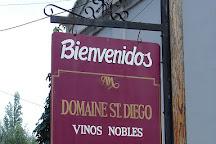 Domaine St Diego, Mendoza, Argentina