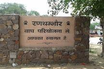 Rifa Tours India - Private Day Tour, Sawai Madhopur, India