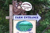 Persimmon Hill Farm, Lampe, United States
