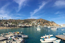 Catalina Island Conservancy, Avalon, United States