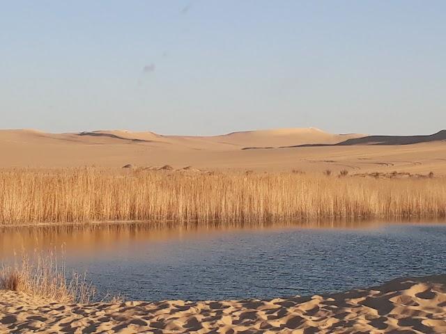 Moon Valley Siwa Oasis