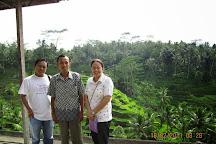 Rio Tour Bali, Ubud, Indonesia
