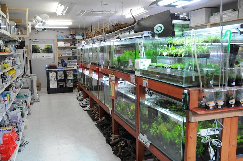 aquarium shop アクアベイ