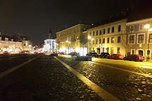 Town Hall Square Fountain, Vilnius, Lithuania