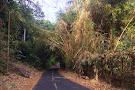 Ancon Hill