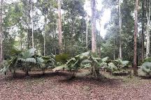 Peninsular Botanic Garden - Thung Khai, Trang, Thailand
