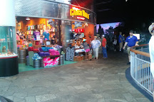 Ripley's Aquarium of Myrtle Beach, Myrtle Beach, United States