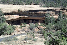 Spruce Tree House, Mesa Verde National Park, United States
