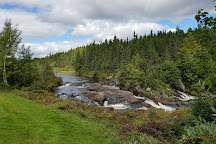 Terra Nova National Park, Glovertown, Canada