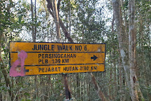 Gunung Berembun, Kampung Jelebu, Malaysia