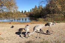 George C. Reifel Migratory Bird Sanctuary, Delta, Canada