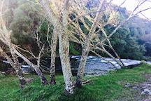 Rere Rockslide, Rere, New Zealand