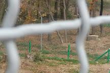 Bear Sanctuary Domazhyr, Zhorniska, Ukraine