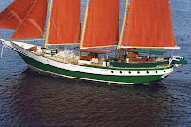 American Rover Sailing Cruises, Norfolk, United States