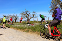Cicloposse Bike Tours, Pienza, Italy