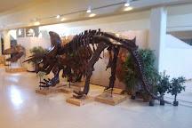 ASU Museum, Jonesboro, United States