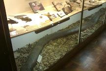 Aquatic and Natural History Museum, Campinas, Brazil
