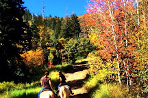 Red Pine Adventures, Park City, United States