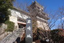 Iwasaki Castle, Nisshin, Japan