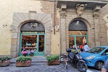 Alberto Cozzi, Florence, Italy