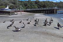 Morgan Memorial Park, Glen Cove, United States