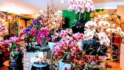 McClient Florist