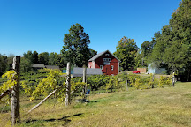 Walker Road Vineyards, Woodbury, United States