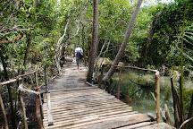 Penang National Park (Taman Negara Pulau Pinang), Penang Island, Malaysia