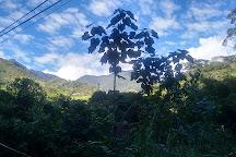 Farallones de Cali, Cali, Colombia
