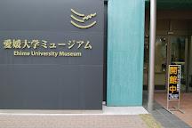 Ehime University Muserum, Matsuyama, Japan