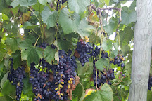 Huber's Orchard & Winery, Starlight, United States