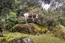 Cascada La Chorrera, Choachi, Colombia