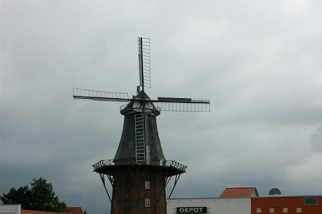 Muschel- und Schneckenmuseum, Norden, Germany