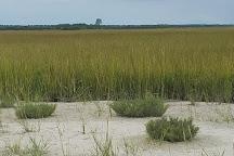 Masonboro Island Reserve, Wilmington, United States