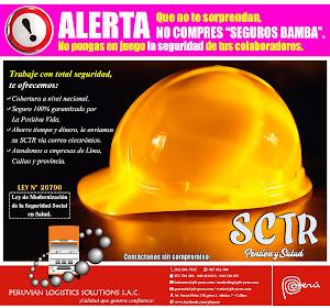 Peruvian Logistics Solutions S.A.C. 6