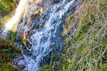 Black Creek Provincial Park, Stokes Bay, Canada