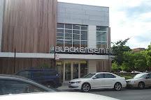 Black Ensemble Theater, Chicago, United States