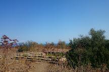 Archaeological Area of Tindari, Tindari, Italy