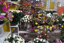 Mercado de Flores, Mexico City, Mexico