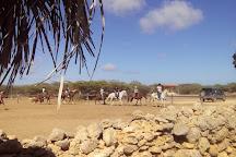 Horse Ranch Bonaire, Kralendijk, Bonaire