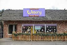 Snowy Peaks Winery, Estes Park, United States