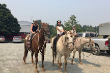Glen Valley Stables, Langley City, Canada