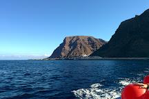 Oceano Whale Watching La Gomera, Valle Gran Rey, Spain