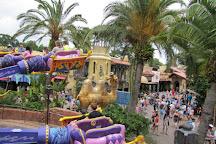 The Magic Carpets of Aladdin, Orlando, United States