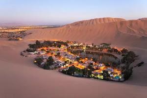 Desert Travel And Service 0